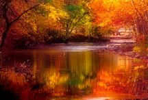 FALL....THE BEAUTY OF MOTHER NATURE / by KEITH SURRATT