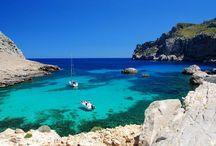 Maiorca / L'isola di Maiorca e capoluogo della comunità autonoma delle isole Baleari. E' un grande centro turistico conosciuto per le spiagge e per la vita notturna. La città è ricca di alberghi e villaggi turistici aventi anche animazione internazionale.