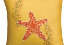 Starfish / by Jan Truluck