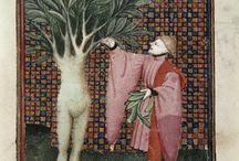 Mitologia clàssica