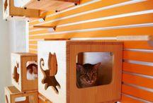 Modular Catswall