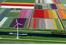 Nederland / by Jan van der Hoorn
