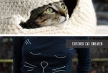 cat ideas / by Shannon Roberts