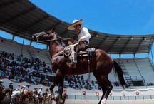 Aguascalientes, México / Paisajes, lugares, cultura, gastronomía y tradiciones del Estado de Aguascalientes, México / by Paulina Lucio
