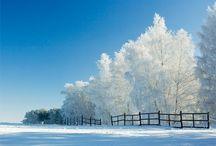 I dream of snow...