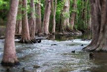 Texas Hill Country Destinations and Favs