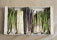 Asparagi - Asparagus / Un tempo erano germogli di primavera più amati da Re Sole, scopriamoli insieme!