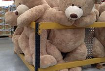 BIG TEDDIES