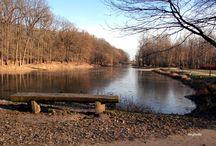 Park miejski  na Bydgoskim Przedmieściu /  **Park miejski na Bydgoskim Przedmieściu jest największym parkiem Torunia.  Powstał około roku 1822**