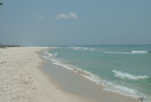 Visitors / What guests say about the beautiful Gulf Coast!