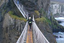 Bridges: Suspension Bridges