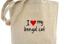 Bengals!