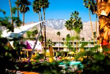 Palm Spring + Stagecoach / by Stacy Brown