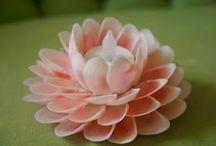Crea con la natura - Natural decorations / Tante idee crafts con uso di materiali naturali *** sezioni legnetti marini - sassi - conchiglie - rondelle legno - tranci legno