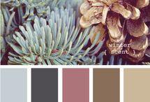 Colors. / by Talia Baldini