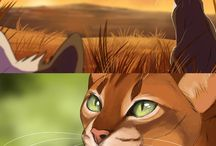 Warrior cats ❤️
