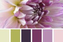 Paletas de colores y fondos