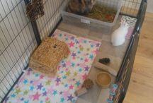 konijnenhokken