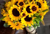Bridal- Yellow / Bridal flowers inspiration in a variation of different shades of yellows