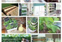 Cool mini garden ideas