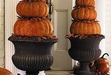Fall Decor / by Marie {Blooming Homestead}