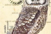 Postcard - Stamps