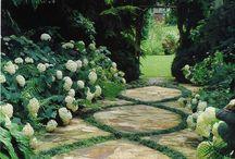 Pathways & Transitions