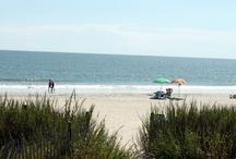 BeachSummerLove