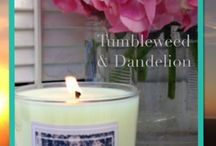 Candles / Handmade soy candles by tumbleweed & dandelion