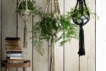 Eden / Ideas for indoor and outdoor plants