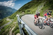 Rennrad Guide Frauen