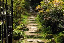 Pretty Pathways / I Love Inviting Walkways. / by Lois Day