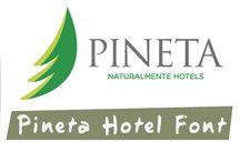 Pineta Font / Font personalizzato, realizzato per Pineta Hotels.