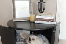 DIY - Dog-Friendly Home / DIY projects for home with your dog in mind