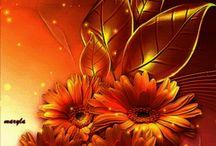 Animált képek virágok