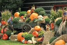 HAPPY HALLOWEEN WELCOME OCTOBER / It's the most wonderful time of the year,from January until December.