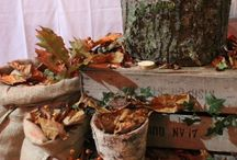 Rustic Hire / We have lots of items to hire which would suit Rustic, Country, or Natural themes for your wedding or event. These include bark and wood products such as log slices, crates, logs, bark containers etc and hessian products such as runners, fabric and chair sashes.