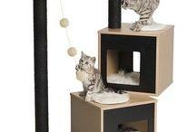 cathouses