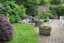 Fire pit and patio / by Marnie Anderson