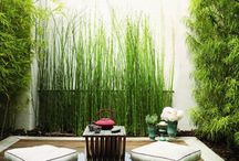 Iturbe Gardens