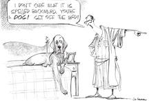 Cartoons / by Terri Parrow Botsford