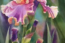 flores muito belas