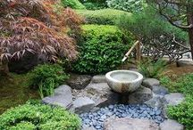 My garden favourites / What inspires me and what I hope to achieve... And my love for Japanese style stone gardens