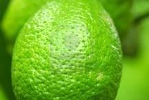 zelená - green