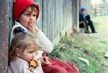 De*ale mele / it, romania dupa 20 de ani, cazuri sociale, animale fara adapost