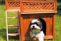 Dream Dog House / Here's some inspiration for a beautiful home for your dog.