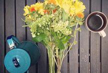 café books e flores