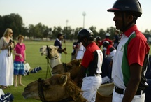 British Polo Day Abu Dhabi 2013