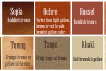 Colour: Brown