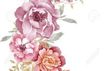 grafika roze